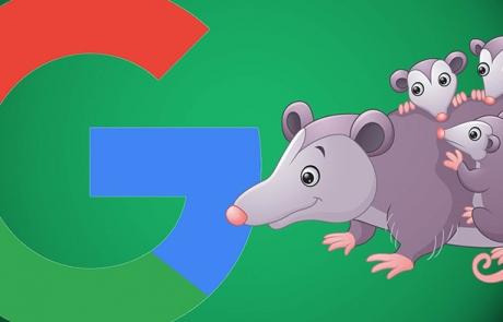 google-algo-update-possum-small